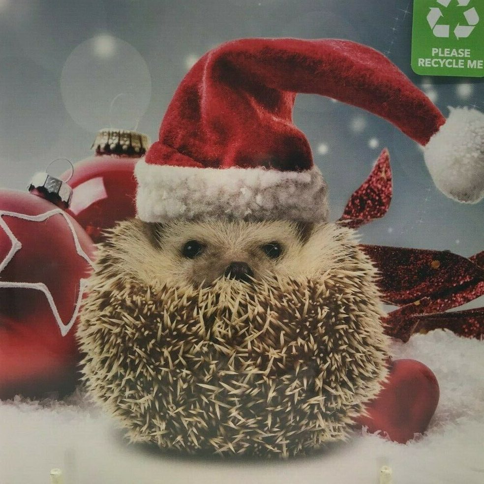 Hedgehog curled up with just its face on show, wearing a Santa hat, in front of baubles.