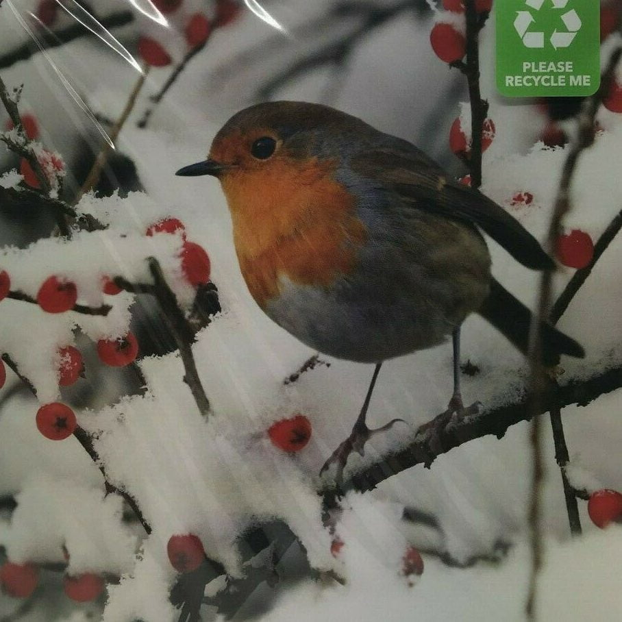A robin on a tree branch covered in berries in the snow.